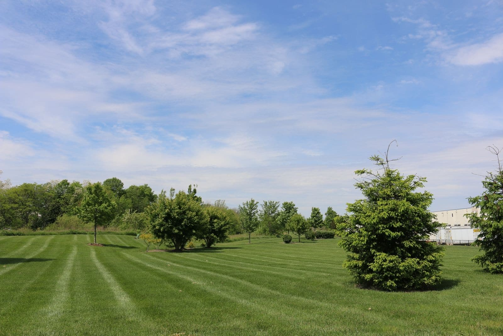 Commercial landscape maintenance design landscape for Commercial landscape maintenance