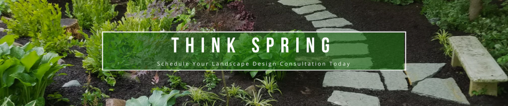 Landscape Design Consultation